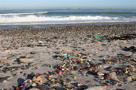 Plastic pollution piling into our oceans > McDaniel
