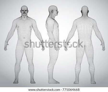 Wire Frame Human Full Body Virtual Stock Vector 775064668